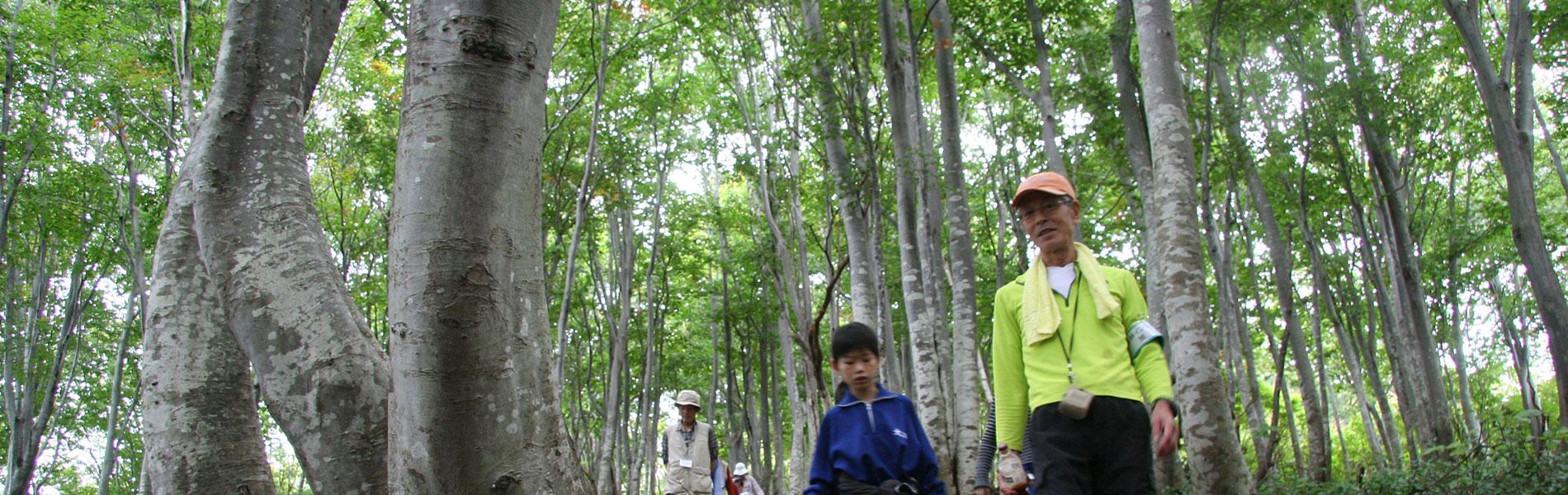 猿倉岳の楽しみ方